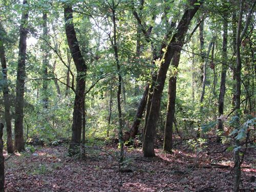 Mature Timberland With Recreationa : Crystal : Atoka County : Oklahoma