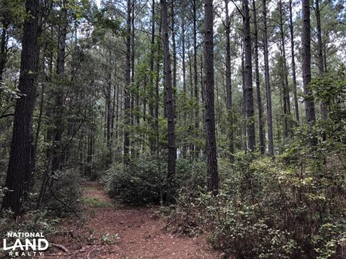 Firetower Rd Wooded Recreational Ho : Ridgeland : Jasper County : South Carolina