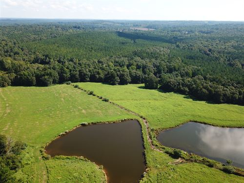The Durbin Homeplace Farm 175+/- Ac : Clanton : Chilton County : Alabama