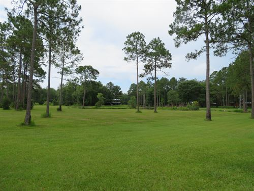 Lot Of Game In A Private Setting : Wacissa : Jefferson County : Florida