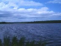 77 Acres In Madawaska, ME : Madawaska : Aroostook County : Maine