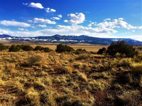 40 Acres In Rio Bravo Ranch : Del Norte : Rio Grande County : Colorado