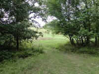 Acreage In Arkansas All Fenced : Batesville : Independence County : Arkansas