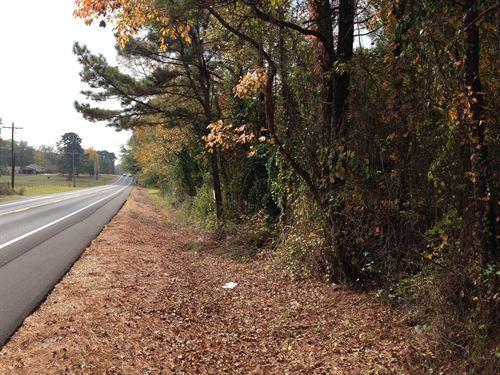 Mostly Young Natural Timberland : Magnolia : Columbia County : Arkansas