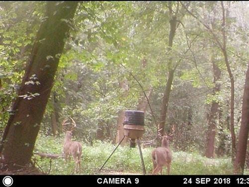 River Hunting/Outdoorsman Package : Reyno : Randolph County : Arkansas