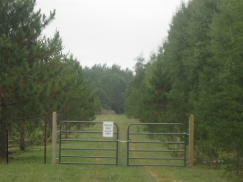 Wooded Land, Abuts State Forest : Willow River : Pine County : Minnesota