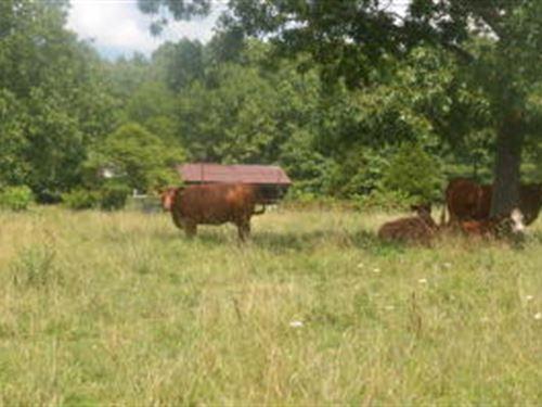 Land Missouri, Hunting, Building : Salem : Dent County : Missouri
