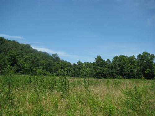 Missouri Hunting Land, 81 Acres : Stover : Morgan County : Missouri