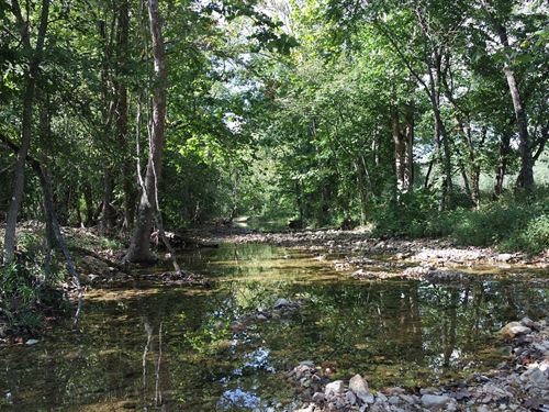 Land South Prong Jacks Fork River : Willow Springs : Texas County : Missouri