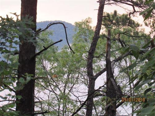 Alleghany Mountains, Va, Mountain : Clifton Forge : Alleghany County : Virginia