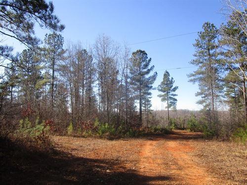 56.24 Acres In Lunenburg County, VA : Lunenburg : Virginia