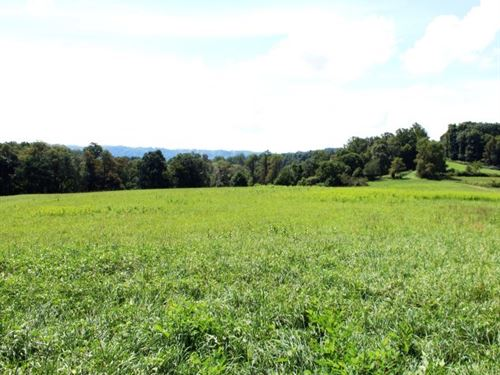 35.42 Acres Land Patrick County, Va : Meadows Of Dan : Patrick County : Virginia