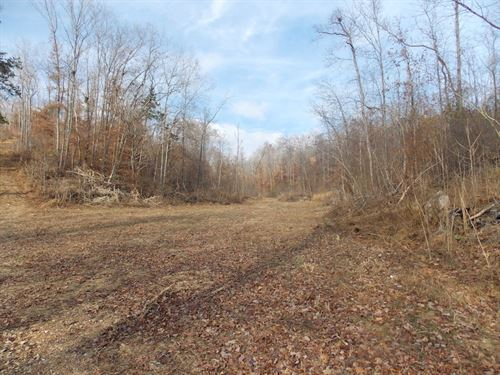 Unrestricted Land Owner Financing : Linden : Perry County : Tennessee