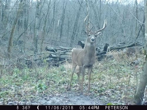 Hunting And Farm Land : Arena : Iowa County : Wisconsin