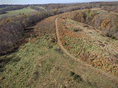75 Acre Farm/Recreational Getaway : Galena : Stone County : Missouri