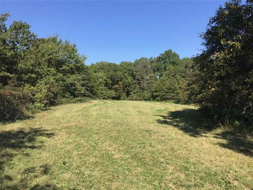 323 Acres of a Hunting Paradise : Stover : Morgan County : Missouri