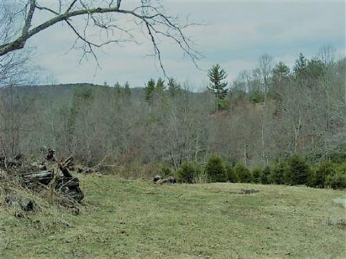 Building Site Blue Ridge Parkway : Floyd : Virginia