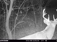 Premium Big Buck Property : Richland Center : Richland County : Wisconsin