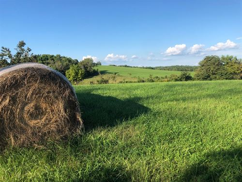 Land, 132+ Acres, Hay Fields : Bloomington : Monroe County : Indiana