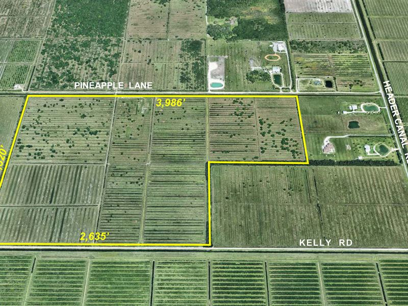 193 Ac Pasture, Cattle Working Pens : Ranch for Sale : Fort Pierce ...