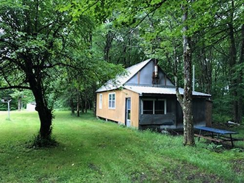 Camp Line Brook Plus Acreage : Osceola : New York County : New York