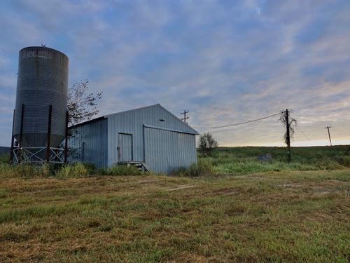 Farm For Sale In Southern Missouri : Wasola : Ozark County : Missouri