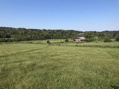 Farm, Hunting, Pond, Barn, Metcalfe : Edmonton : Metcalfe County : Kentucky