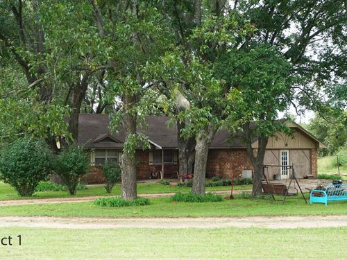 No Reserve Central Oklahoma Horse : Meeker : Lincoln County : Oklahoma