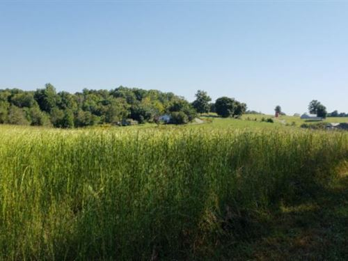 17.50 Acres, Septic Installed : Burkesville : Cumberland County : Kentucky