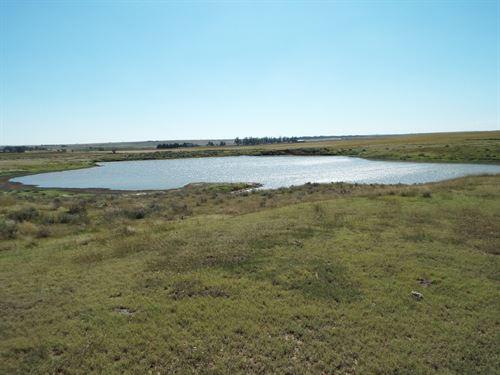 600 Acres Cropland, Grassland, Pond : Rosston : Harper County : Oklahoma