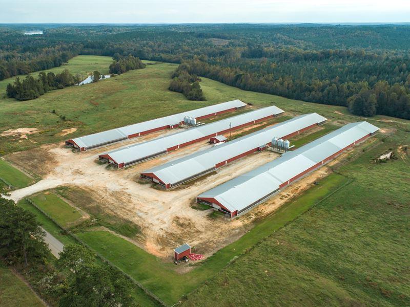 Poultry Farm With 4 Mega Houses : Roanoke : Randolph County : Alabama