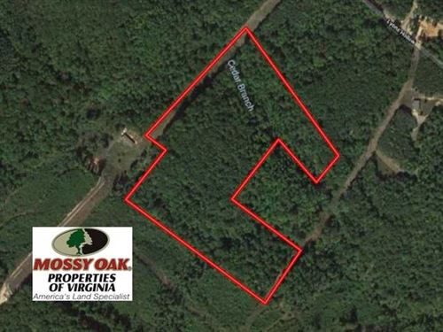 20 Acres of Hunting And Timber Lan : Schuyler : Nelson County : Virginia