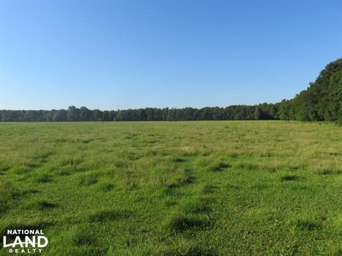 Paw Paw's Pasture And Woods : Terry : Hinds County : Mississippi