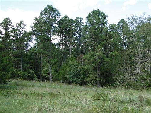Arkansas Hunting Land Large Acreage : Oxford : Izard County : Arkansas