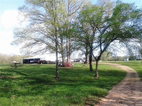 Country Acreage Southern Missouri : Dora : Ozark County : Missouri