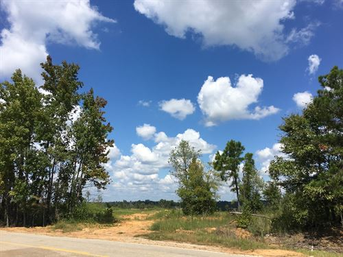 45.25 Acres in Calhoun County, MS : Big Creek : Calhoun County : Mississippi