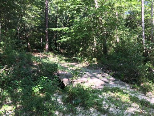 Must See Hunting Tract : Poplarville : Pearl River County : Mississippi