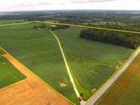 Real Estate Auction With 2 Farms : Avilla : Noble County : Indiana
