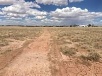 12.5 Acres In Holbrook, AZ : Holbrook : Navajo County : Arizona