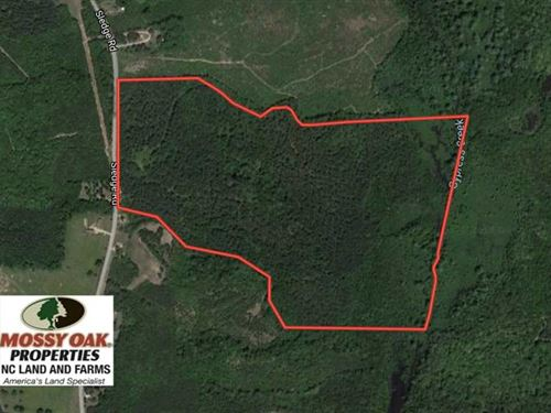 104 Acres of Timber Land Land For : Louisburg : Franklin County : North Carolina