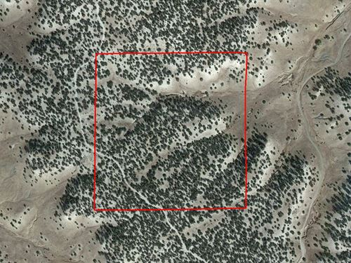 40.45 Acres In Model, CO : Model : Las Animas County : Colorado