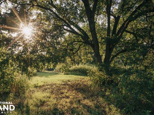 40 Sunflower A.J, Riley Rd : Sunflower : Mississippi