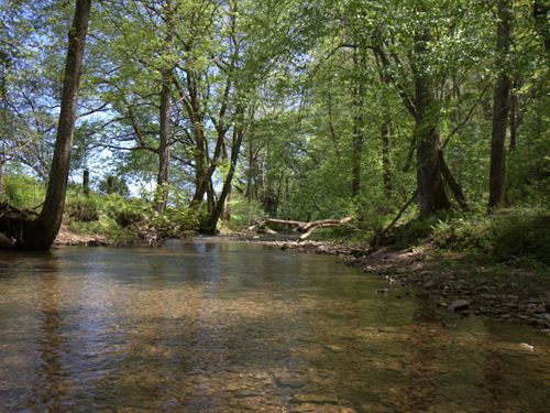 Beautiful 50 Acres On Leatherwood : Cumberland Furnace : Dickson County : Tennessee