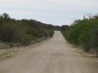 Menard County Hunting/Recreational : Menard : Texas