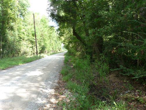 76 Acres in Cottageville, SC : Cottageville : Colleton County : South Carolina