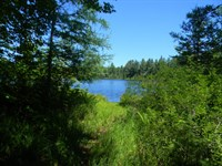 160 Acres in Toivola, MI : Toivola : Houghton County : Michigan