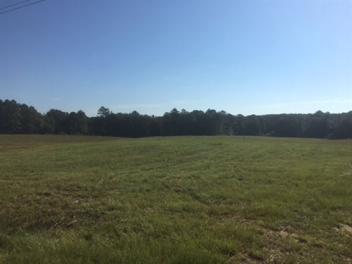 11 Acres Tanglewood Road : Magnolia : Pike County : Mississippi