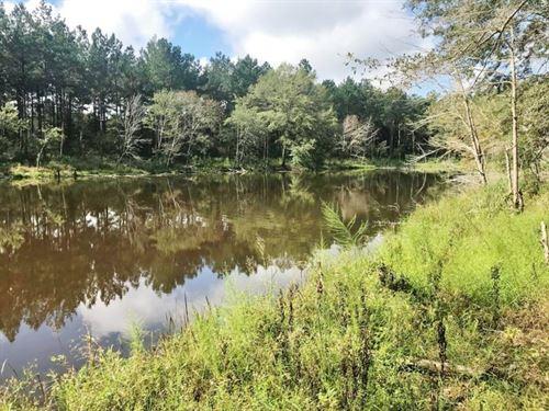 25 Acres Land For Sale Near Stringe : Stringer : Jasper County : Mississippi