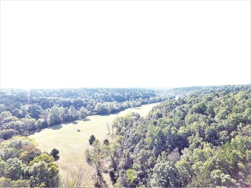 Exceptional Acreage Salem Mo, Land : Salem : Dent County : Missouri