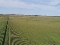 320 Crop Land Acres Deuel County : Brookings : Brookings County : South Dakota